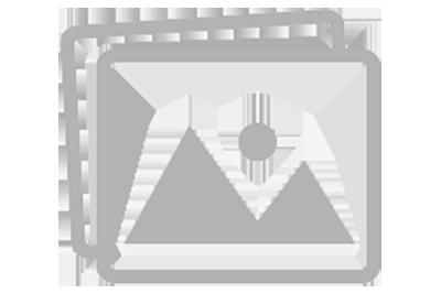 Struktur Organisasi - SMP NEGERI 1 PANARUKAN